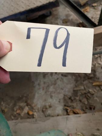 79 (1)