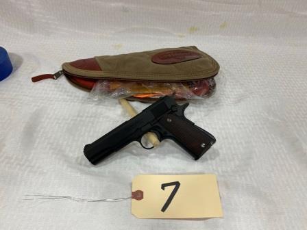 guns (23)