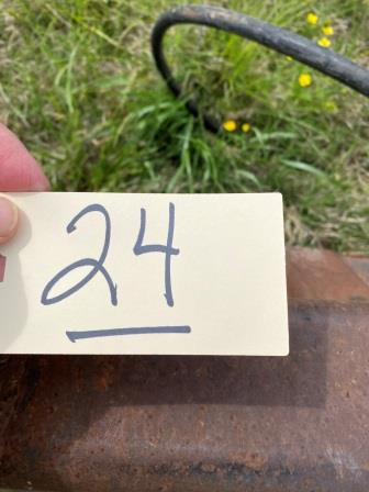 24 (1)